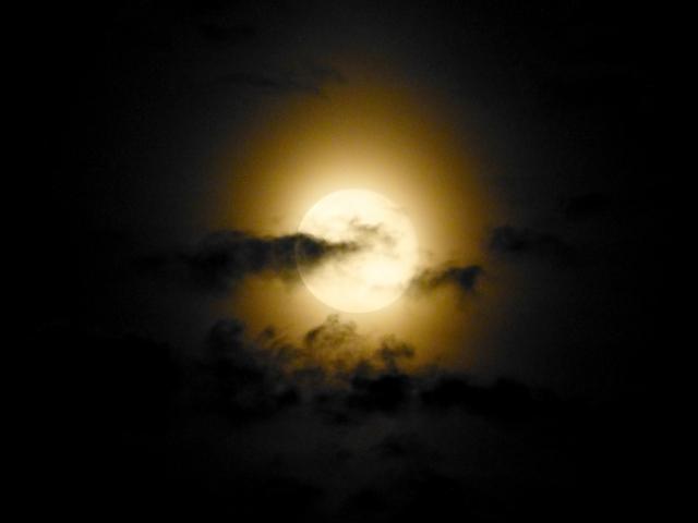 恋しかるべき夜半の月かな